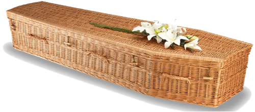 Elementary Willow Eco Coffin